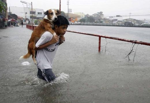 Cậu bé cõng cún cưng băng qua nước lũ ở Manila,Philippines. (Ảnh: Internet)