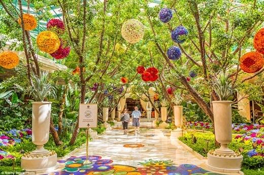 Khi bước vào khách sạn Wynn ở Las Vegas, bạn sẽ ngỡ như mình đang lạc trong một khu vườn thượng uyển của lâu đài nào đó với những quả cầu hoa đủ màu sắc được treo lủng lẳng trên trần.(Nguồn: Daily Mail)