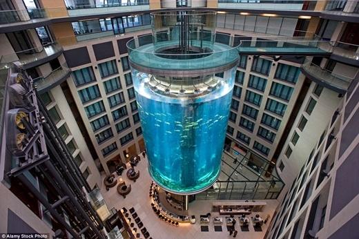 Bể nước ngay giữa sảnh khách sạn Radisson Blu ở Berlin được cho là bể hình trụ lớn nhất thế giới với thể tích lên đến 1 triệu lít nước.(Nguồn: Daily Mail)
