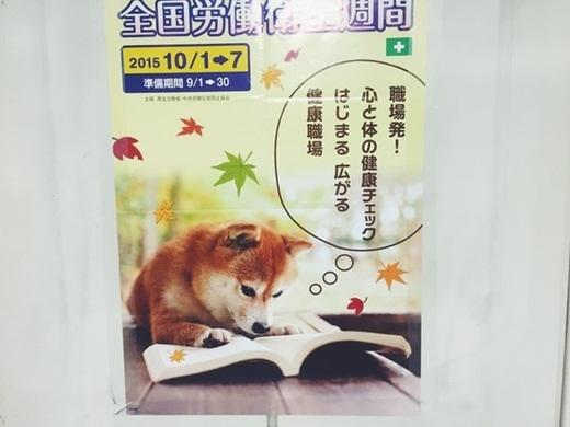Ở Nhật Bản, chó cũng có thể đọc sách?(Ảnh: Internet)