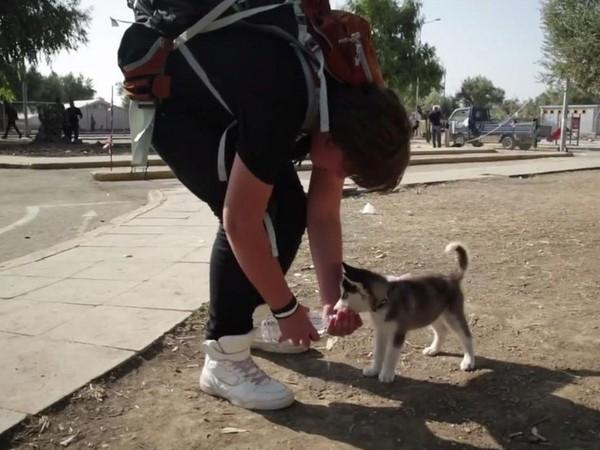 Aslan, chàng trai 17 tuổi đến từ vùng đất Damacus,Syria đã mang theochú chó con tên Rose đi qua 500km tới đảo Lesbos, Hi Lạp để trốn tránh chiến sự căng thẳng tại quê nhà. Cậu bé tâm sự rằng, mình rất yêu chú chó và khi em có thức ăn, có nước uống, em sẽ lo được cho chính mình và người bạn này, dù cho hành trình có gian khổ và đầy nguy hiểm nhưng đôi bạn vẫn bên nhau. (Ảnh Internet)