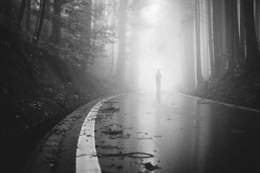 Một sáng sớm đẫm mưa, bóng ai đó lẻ loi đi về phía mặt trời.(Nguồn: Bored Panda)