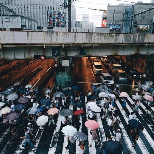 Cơn mưa bất chợt đã giúpcho con phố nhộnnhịp thêm nhiều sắc màu.(Nguồn: Bored Panda)
