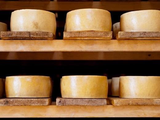 Phô mai Paški sir (Croatia):Đây là một loại phô mai cứng làm từ sữa cừu trên đảo Pag. Paški sir nổi tiếng tới mức được xuất khẩu đi khắp nơi trên thế giới.