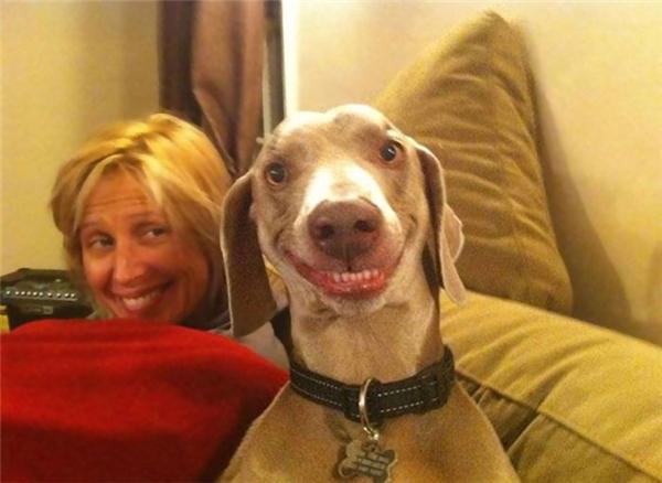 Cười là phải khoe hàm răng trắng xinh thế này...(Ảnh Internet)