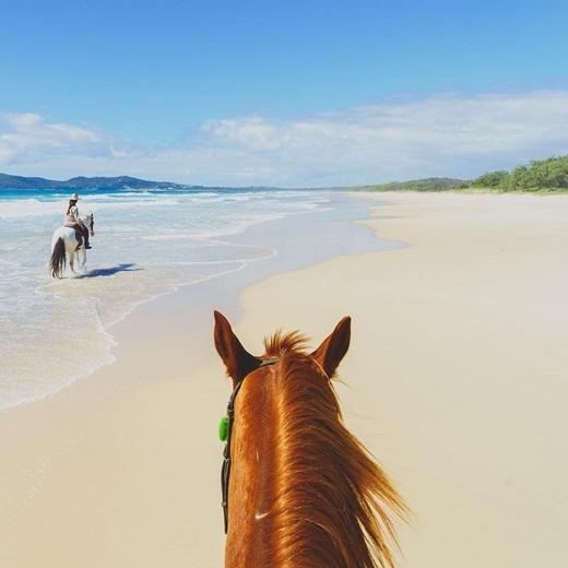 Nhiều người ắt hẳn đã từng cưỡi ngựa phi trên những ngọn đồi cỏ xanh rì hay băng rừng già bí hiểm, nhưng cưỡi ngựa đi dọc bờ biển Sunshine ở Queensland, Úc quả thật là hiếm thấy.(Nguồn IG @jewelszee)