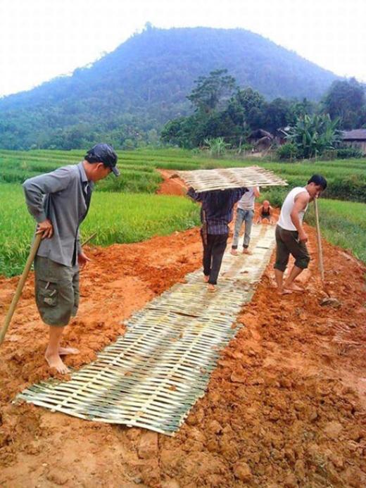 Ngưỡng mộ người Yên Bái làm đường bê tông tre cho học sinh tới trường