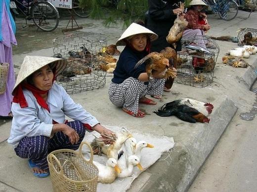 Du khách nước ngoài nói gì về chợ ở Hà Nội?