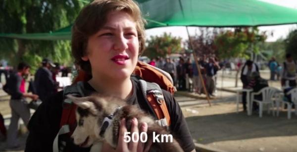 Aslan và chú chó đã đi bộ cùng nhau 500km.