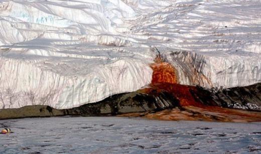"""Được gọi là sông băng""""chảy máu"""" (Blood Falls), dòng sông này kì thực đã bị nhiễm độc sắt và lưu huỳnh hơn hai triệu năm tuổi, vốn là phần nước biển bị mắc kẹt giữa các lớp băng.Còn màu đỏ là do sắt bị ô-xihóa. (Ảnh: Internet)"""