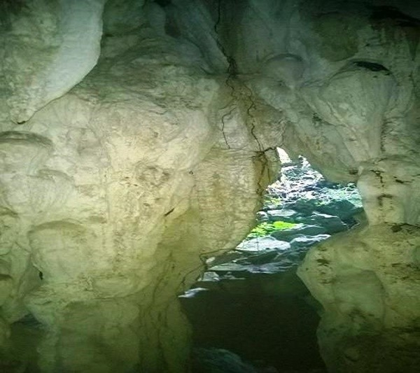Vòm hang rất cao và rộng