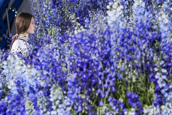 Nhà mốt hơn 70tuổi mang đến không gian lãng mạn tràn ngập màu xanh tím của hoa phi yến. Trước đây, ý tưởng vườn hoa cũng từng được Dior thực hiện và nhận được sự tán thưởng nhiệt liệt.