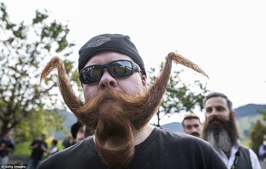 Bộ râu phiên bản chim dang cánh. (Ảnh: Getty Images)
