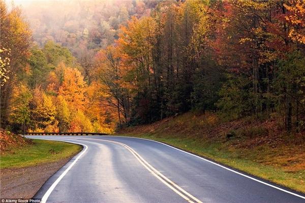 Con đường xuyên núi Smoky trở nên lãng mạn vào mùa thu.