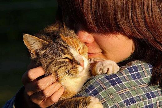 Một cái ôm, một nụ hôn dành cho nhau sau một ngày mệt mỏi.(Ảnh: Internet)