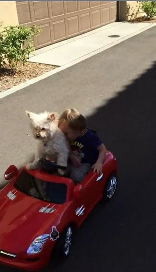 Cậu bé không ngừng dựa đầu vào chú chó một cách hết sức tin tưởng. (Ảnh chụp từ clip)