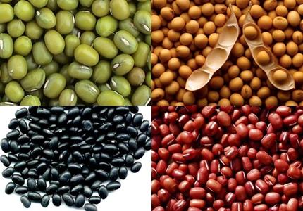 Đậu sống hoặc nấu chưa chín có thể chứa một hàm lượng glycoprotein lectincao gây độc cho cơ thể