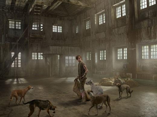 Ivan ăn xin để sống qua ngày trên khắp các con phố, để rồi gắn bó với bầy chó hoang, cùng chia sẻ thức ăn mà cậu cùng chúng xin được.