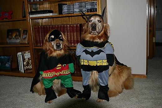 Batman và Robin sẽđến giải cứu bạn khỏi đám ma quỷ trong đêm Halloween.(Nguồn: Internet)