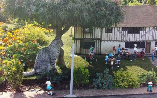 """Mèo khổng lồ ư? Bạn đang nhìn nhầm bởi sự thực là chú mèo đang """"thăm"""" một mô hình nhà thu nhỏ. (Ảnh: SWNS)"""
