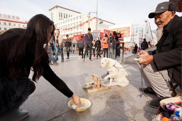 """Những người dân đi qua đều bị chú chó thông minh thu hút và quyên tiền cho cặp chủ tớ đặc biệt này. Thậm chí, họ còn dừng lại một lúc lâu để xem màn """"biểu diễn đường phố"""" độc đáo."""