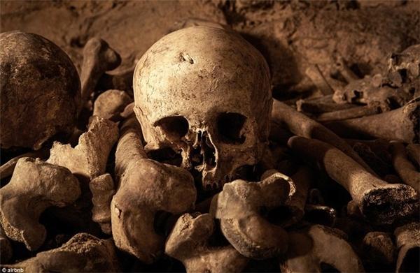 Rùng rợn phần thưởng ở một đêm trong hầm mộ với 6 triệu đầu lâu