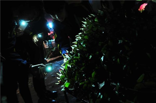 Nhiều người soi đèn pin lựa chọn kỹ càng.