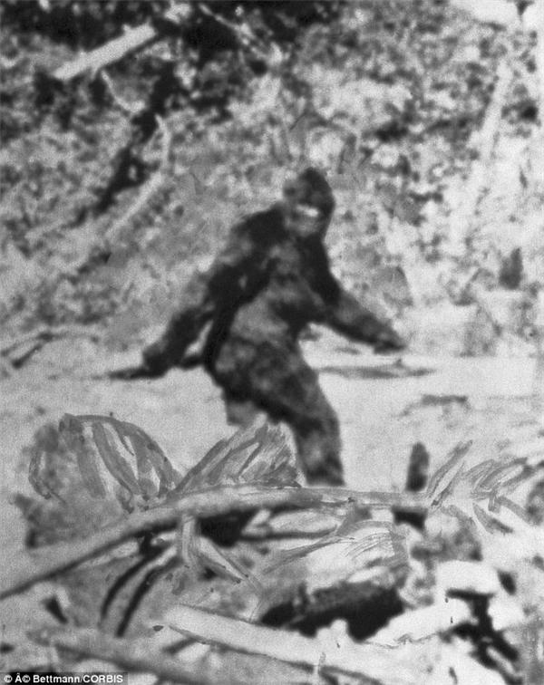 """Những tấm ảnh mờ nhạt không đủ cơ sở làm bằng chứng cho sự tồn tại của các""""quái vật"""" này. (Ảnh: Internet)"""