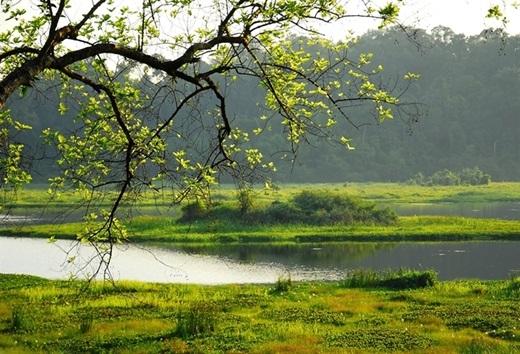"""Cỏ cây xanh mướt, nắng nhẹ, mặt hồ phẳng lặng, không khí trong lành… Nam Cát Tiên hội đủ các yếu tố lí tưởng cho một chốn thiên đường để người thành phố """"trốn chạy"""" vào dịp cuối tuần.(Nguồn: Internet)"""