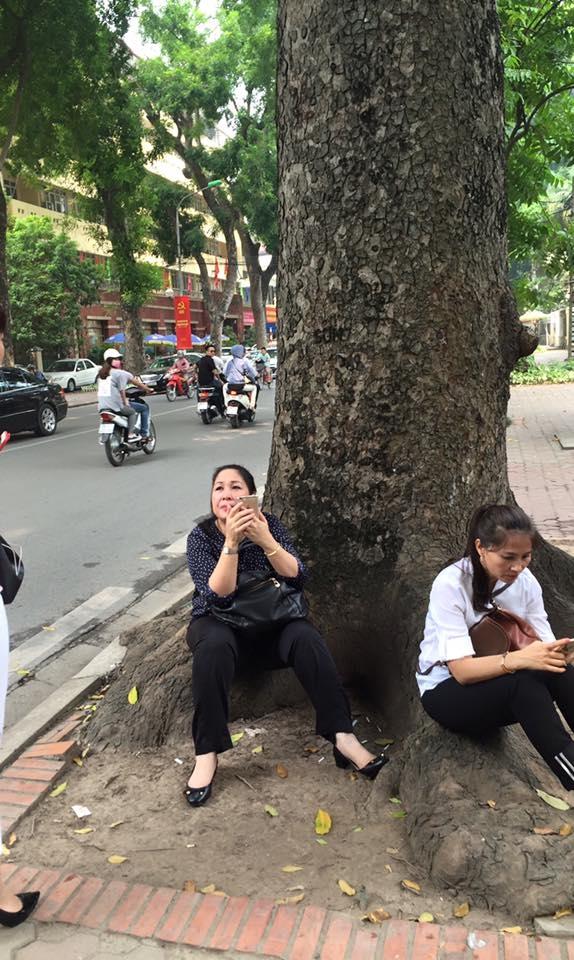NSND Hồng Vân chọn một gốc cây to để ngồi nghỉ ngơi. - Tin sao Viet - Tin tuc sao Viet - Scandal sao Viet - Tin tuc cua Sao - Tin cua Sao