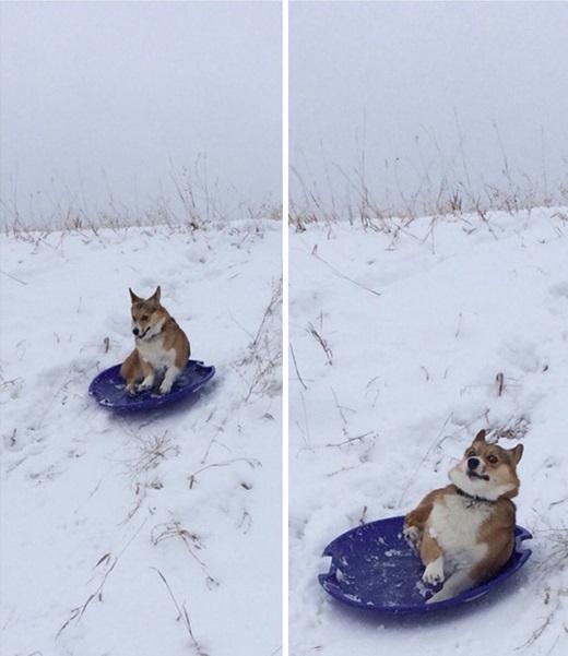 Có lẽ đây là lần cuối cùng tôi thấy anh ấy chơi trượt tuyết.(Ảnh: Innamag)
