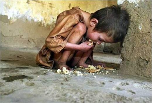 Hình ảnh tấm thân lem luốc, gầy guộc phải nhặt nhạnh từng mẩu bánh, vụn cơm để sống qua ngày khiến người chứng kiến không thể cầm được nước mắt. (Ảnh: Internet)