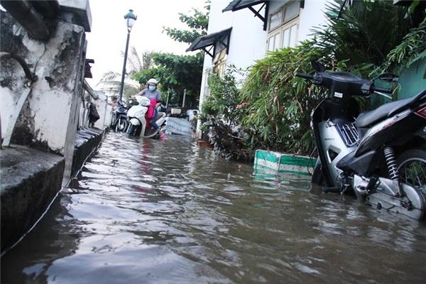 Nhiều nơi chìm trong biển nước do triều cường dâng cao. Ảnh: NT