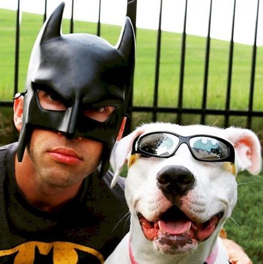 Khi Batman có thú cưng...(Ảnh: Diply)