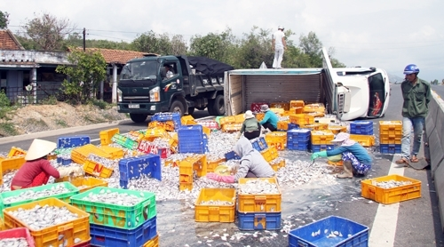 Người dân giúp tài xế gom hàng trăm tấn cá bị đổ ra đường. Ảnh: Internet