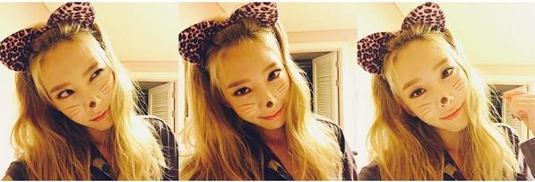 """Trong concert diễn ra ngay đêm Halloween, Taeyeon (SNSD) đầu tư hóa trang thành cô mèo tạo dáng cá tính. Sau đó, cô nàng còn tặng thêm cho fan loạt ảnh """"tự sướng"""" đáng yêu."""