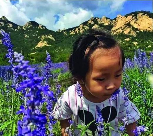Con gái anh được tự do khám phá thiên nhiên xung quanh mình. (Nguồn: Internet)