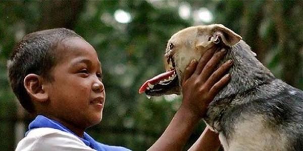 Chú chó Kangbang bị mất gần nửa khuôn mặt vì cứu chủ nhân. Ảnh: Internet