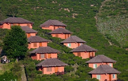 Nhà nghỉ Lee Wine Ruk Thai nằm trên sườn đồi thoai thoải, vây quanh bởiđồi chè, là một điểm lí tưởng để ngắm bao quát cảnh đẹp của ngôi làng này.(Ảnh: True Life)