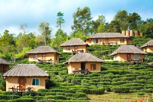 Dạo quanh làng để thưởng ngoạn không khí trong lành và chụp những bức ảnh đẹp lung linh. (Ảnh: True Life)