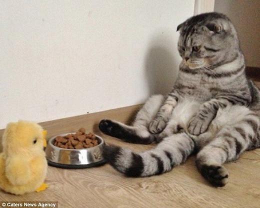 """""""Ăn đi con, bố ngày xưa không có đồ ngon vậy mà ăn đâu!"""". (Ảnh: Internet)"""