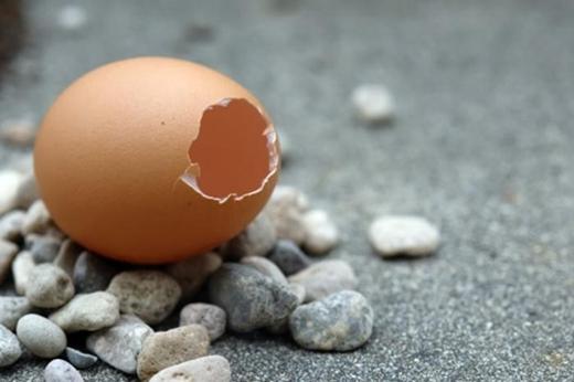 Mảnh vụn vỏ trứng giúp hấp thụ các vết ố bẩn trên quần áo.(Ảnh: Internet)