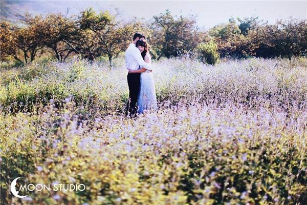 Phát ghen với tình yêu sét đánh của cô hoa khôi và chàng sửa xe