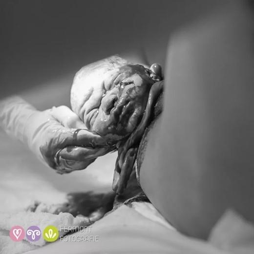 Khoảnh khắc thiêng liêng khi một sinh linh bé nhỏ đón chào thế giới. (Ảnh: Fermont Fotografie)