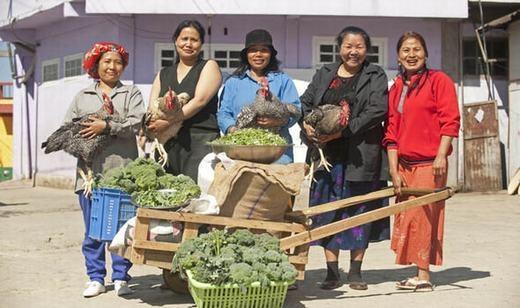 Họ chủ yếu tự sản xuất lương thực để dùng. (Ảnh: Internet)