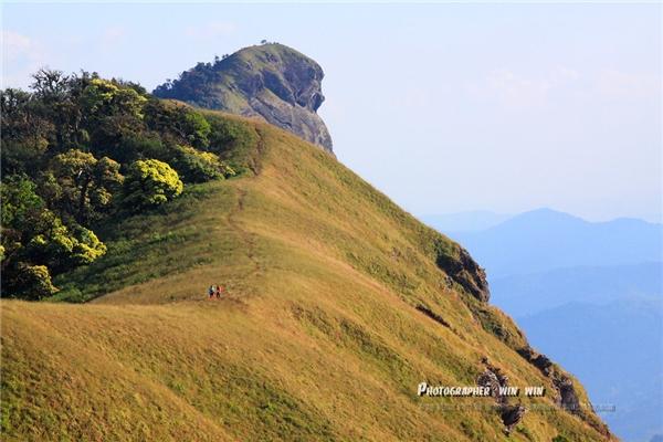 Doi Hau Singh đúng nghĩa là một vùng đất thần tiên với nắng nhè nhẹ, đồng cỏ xanh hút mắt cùng những con dê núi quý hiếm nhởn nhơ. (Ảnh: Internet)