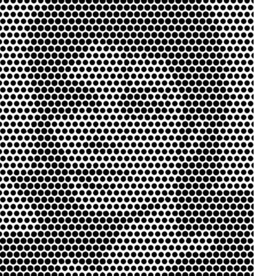 Khi nhìn lâu, bạn thấy hình gì? (Ảnh: Internet)