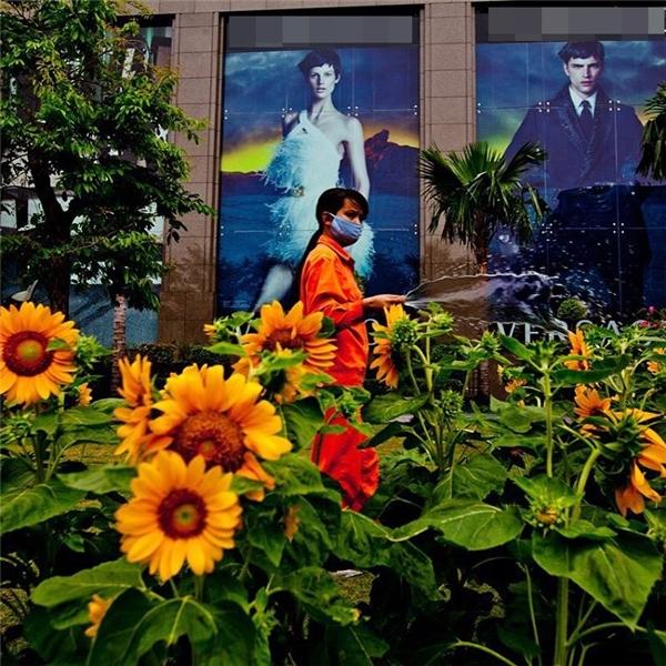 Người Sài Gòn ngày ngày chăm chút, tô điểm cho đời... (Ảnh: IG @everydayvietnam)