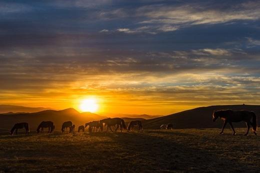 Mặt trời dần ló dạng sau rặng núi, những tia nắng rực rỡ đua nhau trải trên đồi cỏ.(Ảnh: Internet)