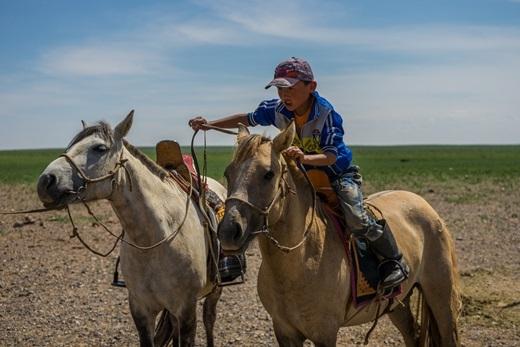 Bên cạnh linh dương, ngựa cũng là một trong những phương tiện di chuyển ở đây.(Ảnh: Internet)